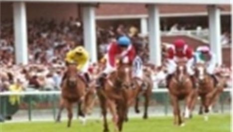 Summer Race Evenings at Haydock Park Racecourse