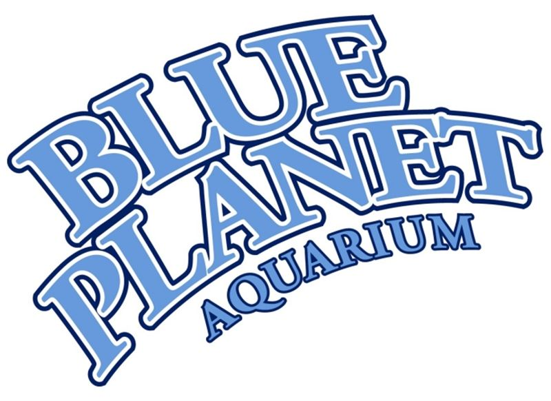 Free Kid S Ticket To Blue Planet Aquarium Events