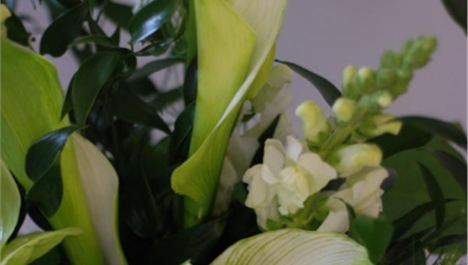 Win workplace flowers for a month