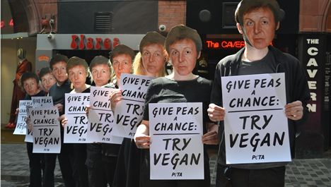 Bunch of nutters storm Mathew St in Paul McCartney masks