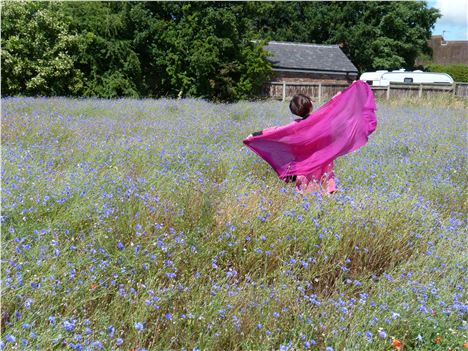 Mrs Zhou From Chengdu In A Landlife Cornflower Field On Kirkby