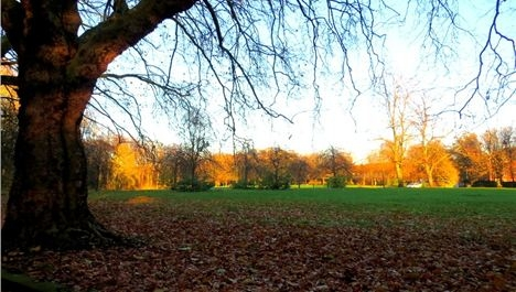 Green space sell off: Objections and comments scrutinised
